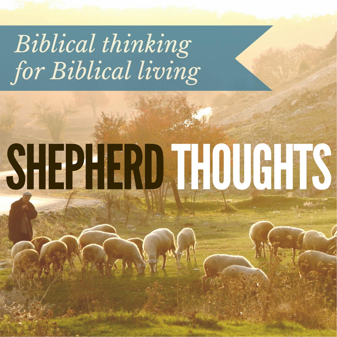 Episode 182 Misused Bible Verses Example 9 Shepherd Thoughts